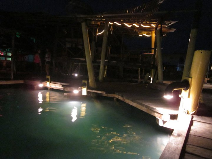 bocas town bocas del toro party central and south america your
